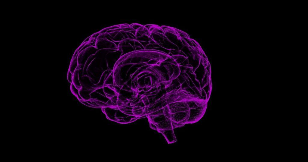 NAC a układ nerwowy
