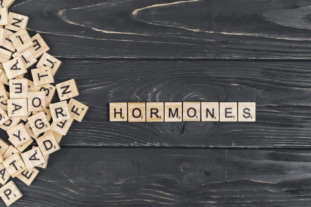 Diet break a hormony